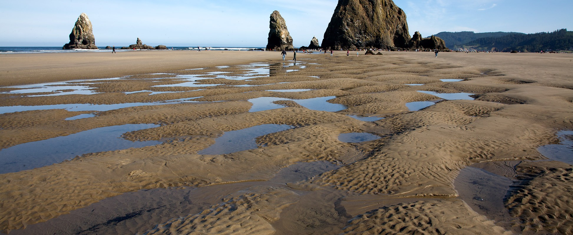 cannon-beach-tidepools