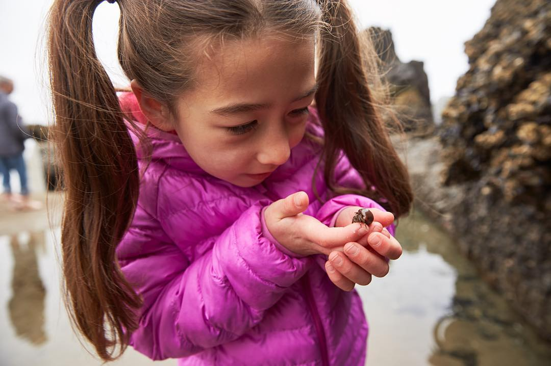 When you're small, but nature is even smaller. Tidepool pals. 🦀 📷: @judiaann#surfsand #explorecannonbeach #neverstopexploring #cannonbeach #oregoncoast #thepeoplescoast #traveloregon #cannonbeachpnw #pnw #pnwonderland #ocean #pacific