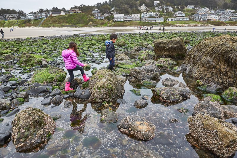 Kids playing at low tide.